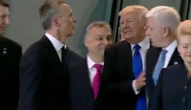 Trump arat liderilor NATO cine e seful
