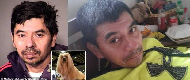 Un bărbat a violat cățelul logodnicei sale