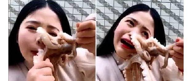 Vlogeriță mușcată de caracatiță în timp ce încerca să o mănânce crudă și vie
