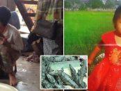 Fetiță mâncată de crocodilii crescuți în ferma tatălui ei din Cambodgia
