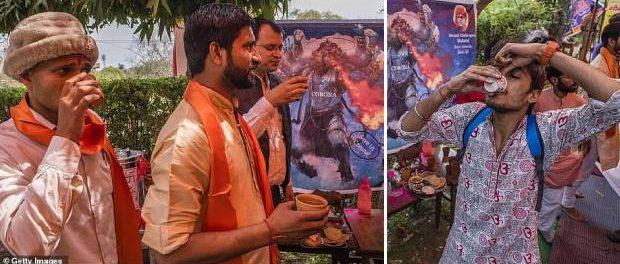Sute de credincioși hinduși beau urină de vacă pentru a se apăra de CORONAVIRUSSute de credincioși hinduși beau urină de vacă pentru a se apăra de CORONAVIRUS