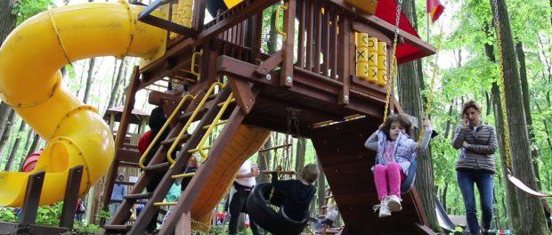 Imagini revoltătoare de la un loc de joacă dintr-un parc