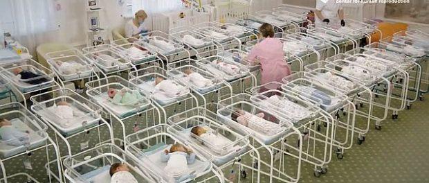 BioTexCom a prezentat un video cu 46 de copii născuți cu mame surogat în Ucraina
